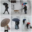 Umbrellas by winter - Stock Photo