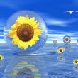Stock Photo: Sunflowers in bubbles