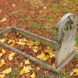 Stock Photo: Old tombstone and autumn leaves