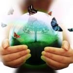 Symbol of the environment — Stock Photo
