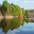 Stock Photo: Lake and forest