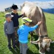 Young cow boys — Stock Photo