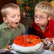 Two boys is blowing candles — Stock Photo #4084806