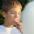 A young boy to regale with candy floss - Stock Photo