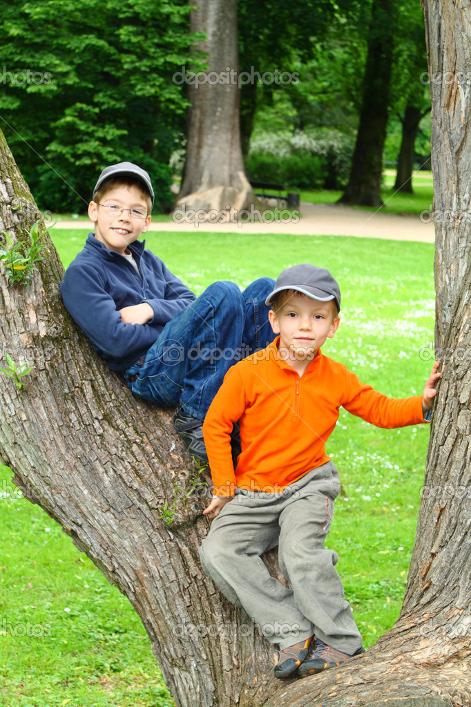 Smiling young brothers sitting in a tree  — Stock Photo #4663055
