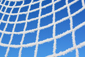 Net of goal in hoarfrost — Stock Photo