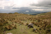 Pichincha — Stock Photo
