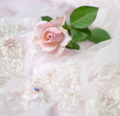 Pink rose on wedding lace (copy space) — Stock Photo
