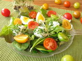 Salad with tomatoes and cream cheese balls with cress — Stock Photo