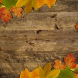 Leaves frame on wood - Stock Photo