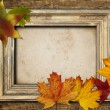 Royalty-Free Stock Photo: Frame and leaves