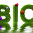 Royalty-Free Stock Photo: Bio grass