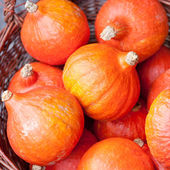 Pumpkins at a market — Stock Photo