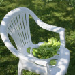 Stock Photo: Vegetables for salad on the white chair