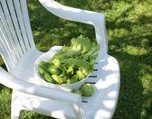 Verduras para ensalada en la silla blanca — Foto de Stock