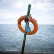 Stock Photo: Lifesaver Against Choppy Waters