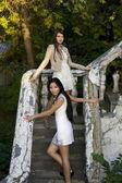 Twee vrouwelijke vrienden staande op de trap — Stockfoto