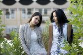 Two female friends walking — Stock Photo