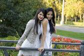 Two female friends walking outdoor — Stock Photo