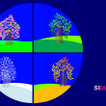 Four seasons. trees. vector. — Stock Vector