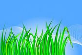 Grass. — Stock Vector