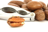 Pecan nuts and nut-cracker — Stock Photo