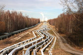 Pipelines leading into the horizon with power-station — Stock Photo