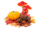 Pumpkin, chestnuts, mushroom and fake autumn leaves — Stock Photo