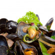 Pile of mussels in red casserole — Stock Photo