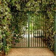 Green gateway — Stock Photo #4812653