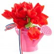 Pink watering can with red Dutch tulips — Stock Photo #4882137