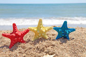 Colorful starfish shells on the beach — Stock Photo