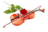 ヴァイオリンと赤いバラ — ストック写真
