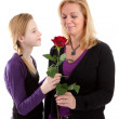 Young girl gives rose to mother — Stock Photo