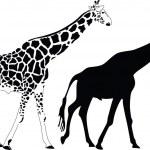 Giraffe silhouette vector — Stock Vector