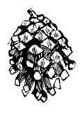 ペン描画 alstrameriya の花 — ストックベクタ