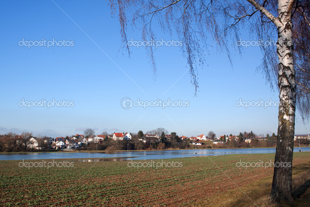 Flood in Hessen, Germany, photographed in January 2011  Stock Photo #4803886