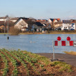 Flood in Germany — Stock Photo #4974232