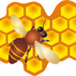 Royalty-Free Stock : Bee And Honey vector