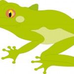 Frog vector — Stock Vector #5273745
