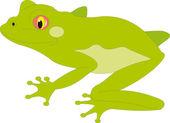 Frog vector — Vetorial Stock