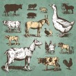 Farm animals vintage set (vector) — ストックベクタ