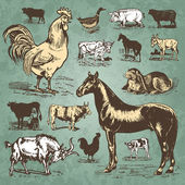 Farm animals vintage set (vector) — Cтоковый вектор