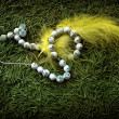 Beads and yellow feather - Stockfoto