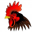 Rooster head — Stock Photo #5112827