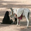 Bedouin woman — Stock Photo #5146658