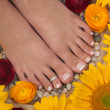 Pedicure Spa — Stock Photo