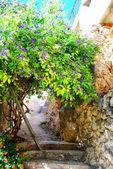 Platanias alleyway — Stock fotografie