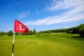 Vlajka na golfovém hřišti — Stock fotografie
