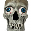 Skull with Eyes — Stock Photo